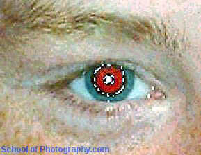 fig 2 Red Eyes © digital photography image